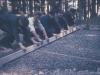 1957_bau_schuetzenhaus_10