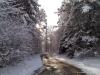 2010_winterimpressionen__02