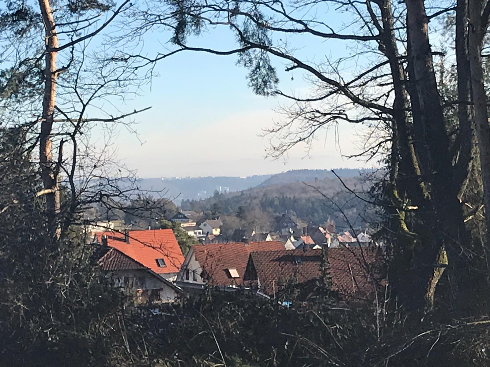 2018-12-28_Wanderung (9)